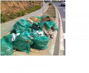 Los residentes aledaños aseguran que durante varios días permanecen las bolsas de basura en la zona.  - Suministrada: Pedro Matallán/GENTE DE CAÑAVERAL