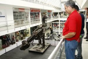 En los centros comerciales se organizarán exposiciones de diferentes expresiones artísticas.  - Archivo/GENTE DE CAÑAVERAL