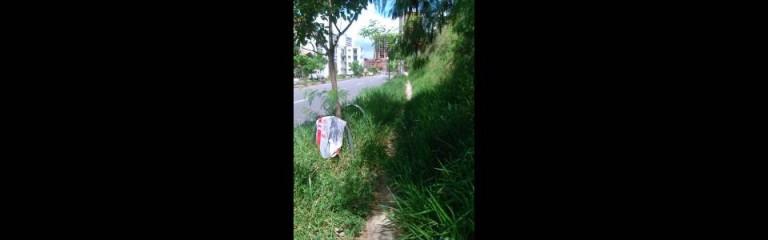 La falta de mantenimiento en la zona verde dificulta el tránsito de los peatones