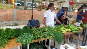 Los agricultores estarán ofreciendo sus productos desde las 6:00 de la mañana.  - Suministrada/GENTE DE CAÑAVERAL