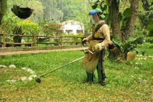 Se recuperarán los jardines y demás espacios verdes del Jardín Botánico. - Suministrada /GENTE DE CAÑAVERAL