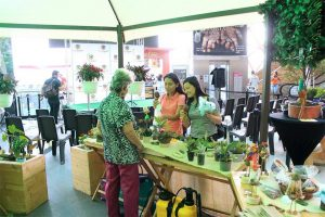 Durante todo marzo se estará realizando una exposición de plantas en el centro comercial Parque Caracolí.  - Suministrada/GENTE DE CAÑAVERAL