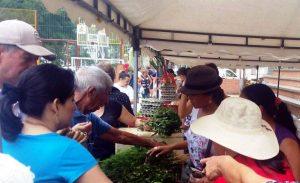Los habitantes de Cañaveral podrán adquirir los productos cosechados en Floridablanca a muy bajo costo.  - Archivo/GENTE DE CAÑAVERAL