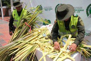 Las autoridades ambientales adelantan campañas de concienciación para evitar el uso de la palma de cera.  - Suministrada/GENTE DE CAÑAVERAL