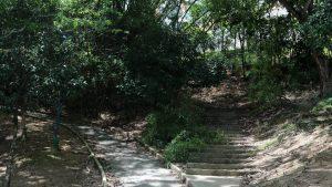 Los senderos también están abandonados y requieren mantenimiento.  - Fabián Hernández/GENTE DE CAÑAVERAL