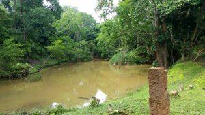 Más de 3.500 hectáreas de bosque han sido protegidas a través de estos incentivos. - Suministrada Prensa Cdmb/GENTE DE CAÑAVERAL