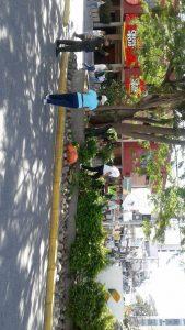 Los infractores limpiaron la glorieta verde de Cañaveral como parte de la sanción que estipula el Código de Policía.  - Suministrada/GENTE DE CAÑAVERAL