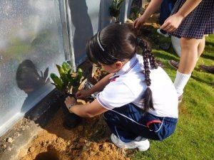 Los estudiantes se unieron masivamente a esta jornada ambiental.  - Suministrada/GENTE DE CAÑAVERAL