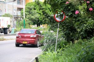 Debido a la falta de poda, algunas señales de tránsito por la autopista, no se ven. - Élver Rodríguez/GENTE DE CAÑAVERAL