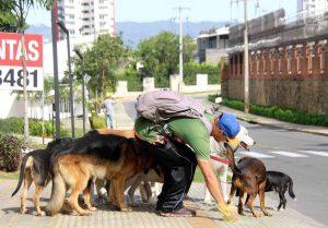 Los paseadores  están obligados a recoger las heces de los perros mientras cumplen su recorrido.  - Élver Rodríguez/ GENTE DE CAÑAVERAL