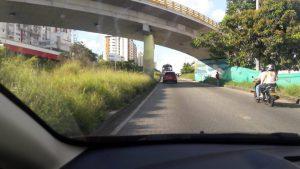 Los altos arbustos obstruyen la visibilidad y podrán ocasionar un accidente.  - Suministrada/GENTE DE CAÑAVERAL