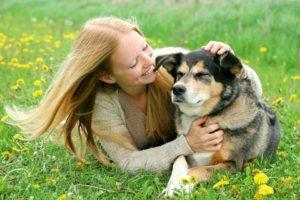 Los problemas salud más comunes en perros mayores son las enfermedades oculares, pérdida de la audición, enfermedades articulares y la pérdida de piezas dentales. - Banco de Imágenes/ GENTE DE CAÑAVERAL