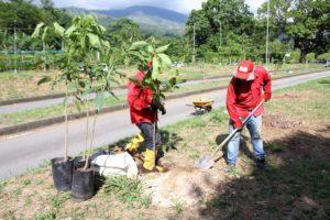 Con esta iniciativa, el AMB busca crear una cultura ambiental en Bucaramanga y el área metropolitana.  - Suministrada/ GENTE DE CAÑAVERAL