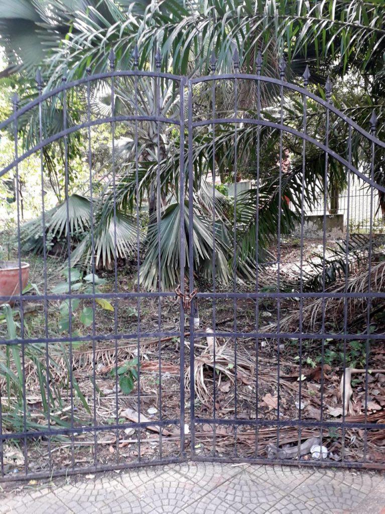 La zona verde del parque de la Salud refleja abandono y falta de mantenimiento. - Suministrada/GENTE DE CAÑAVERAL