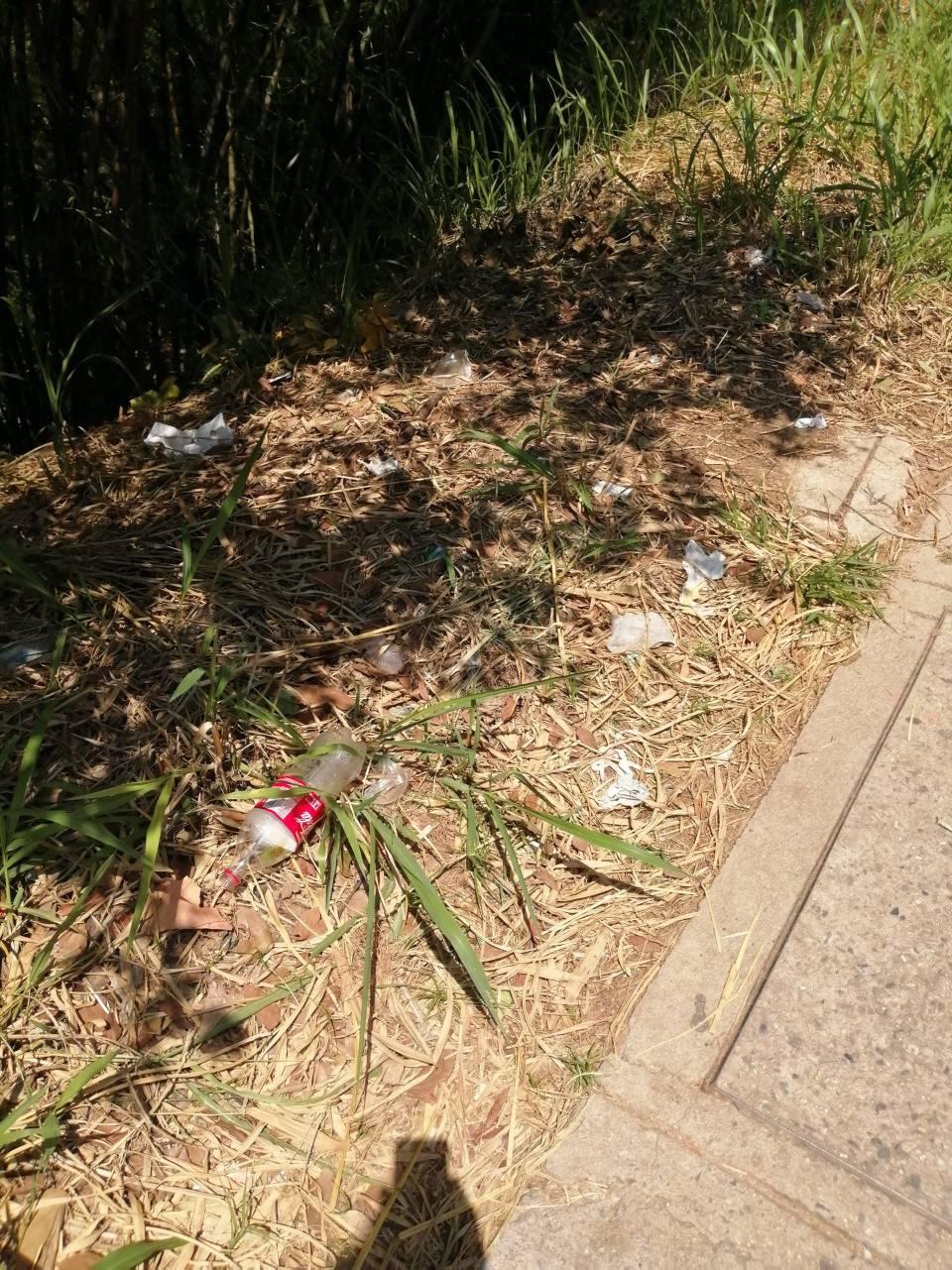 De acuerdo con la denuncia, las calles de Cañaveral se han convertido en el basurero de los ciudadanos. - Suministrada/GENTE DE CAÑAVERAL