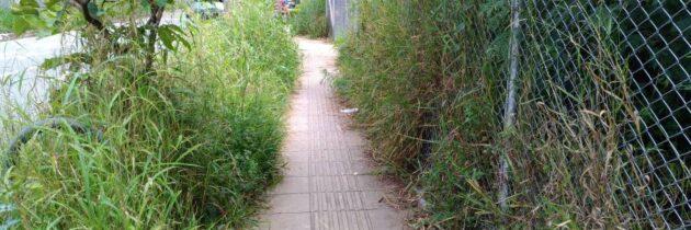 Abandono en paso  peatonal del sector Ardila Lulle