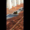 Peligrosos criaderos de  zancudos en Versalles
