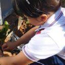 FCUIS contribuye  con el medio ambiente