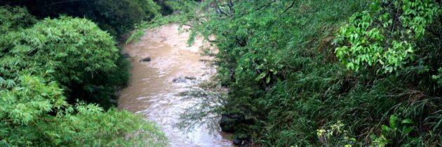 Quebradas Suratoque y Zapamanga, áreas protección de Cañaveral