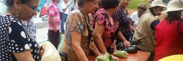 El domingo habrá  mercado campesino