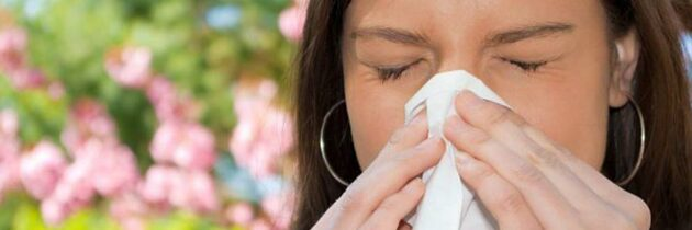Alergias: Lo que  debemos saber