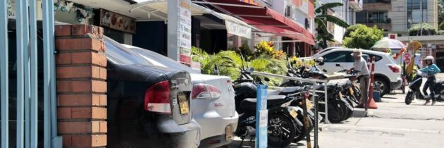 ¿Está permitido estacionar en los antejardines?
